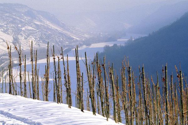 Mosel snow