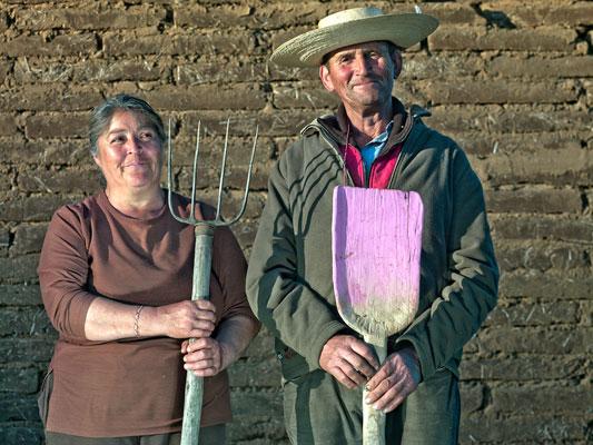 Grower Champange couple, Maule Carignan,