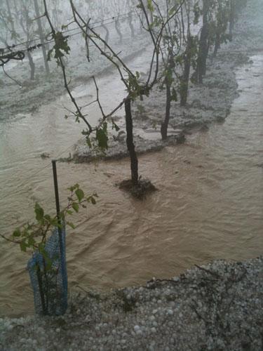 Hail in Burgundy 2013