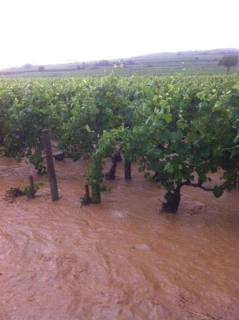 Burgundy floods July 2013