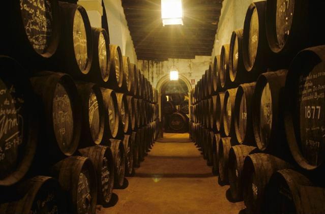 Gonzalez Byass barrel room
