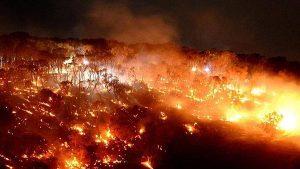 Barossa bush fires