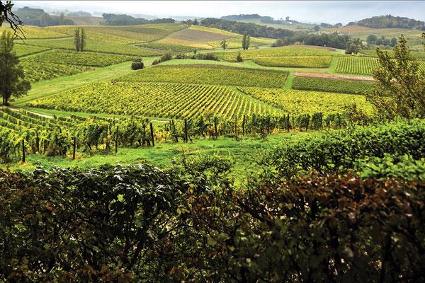 Bergerac landscape