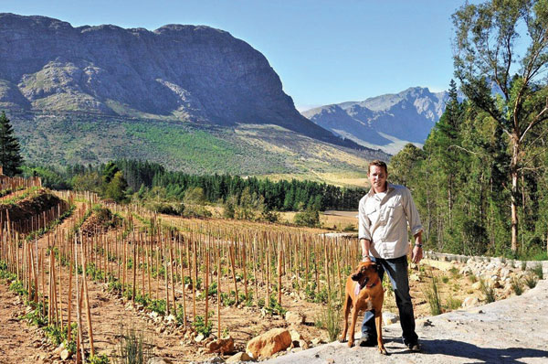 Franschhoek, Gottfried Mocke winemaker Vineyards