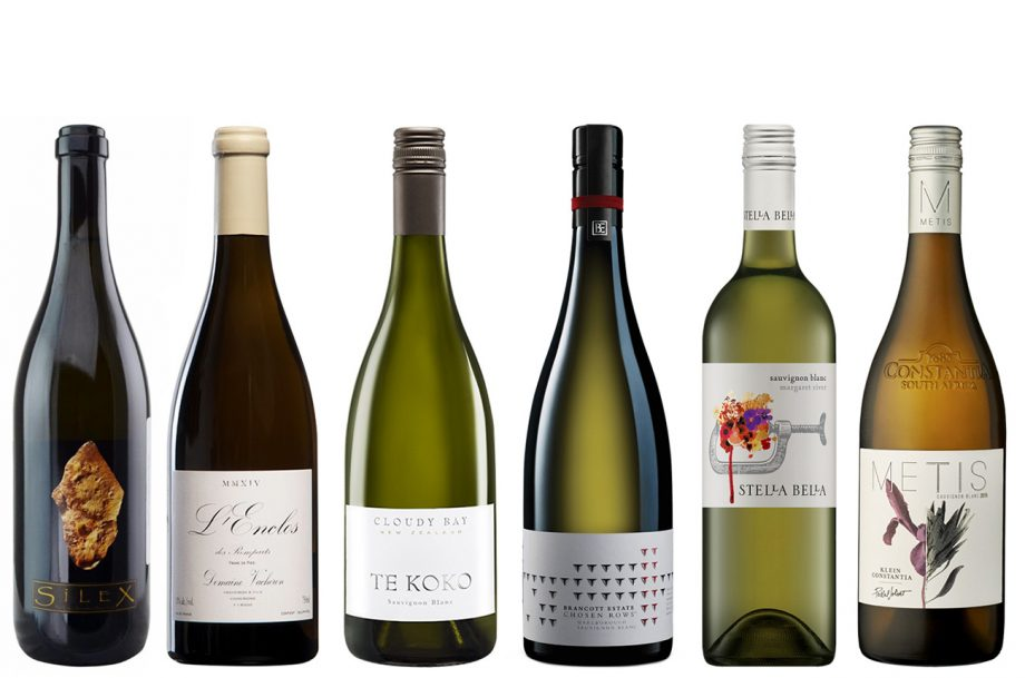 Best Sauvignon Blanc Wines