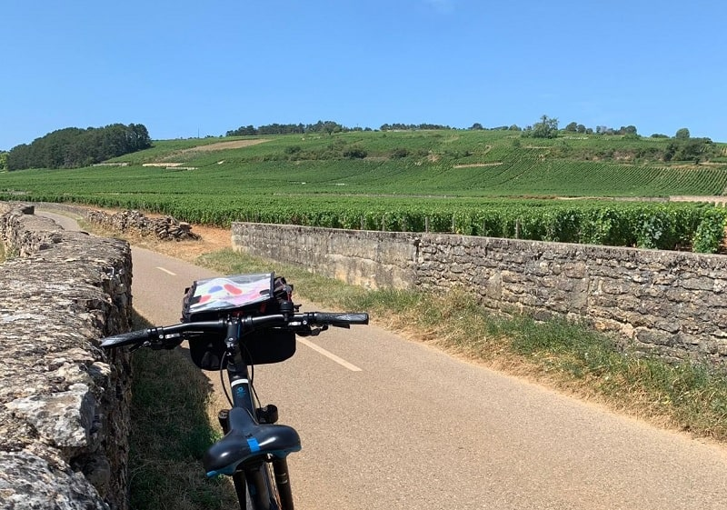 beaune cycle vineyards