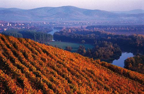 travel, Tokaj