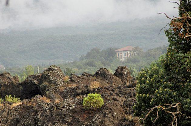 Etna regional profile