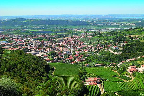 Villa St Anna Wine
