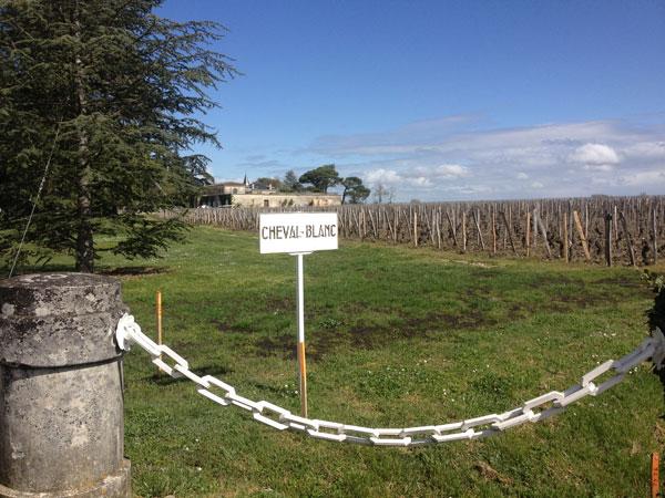 Bordeaux 2014 campaign