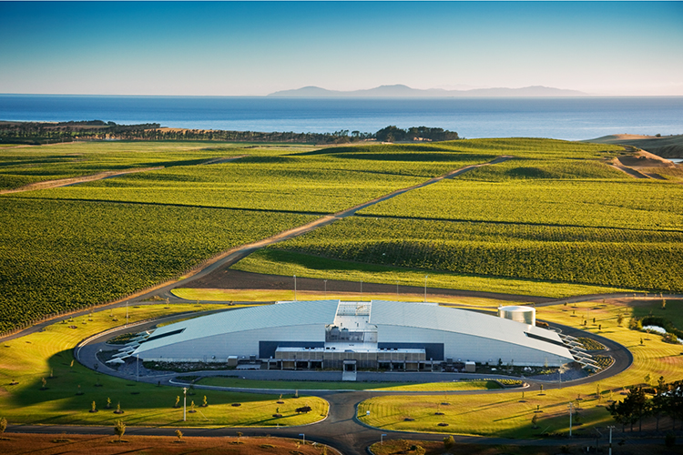Yealands Winery, New Zealand