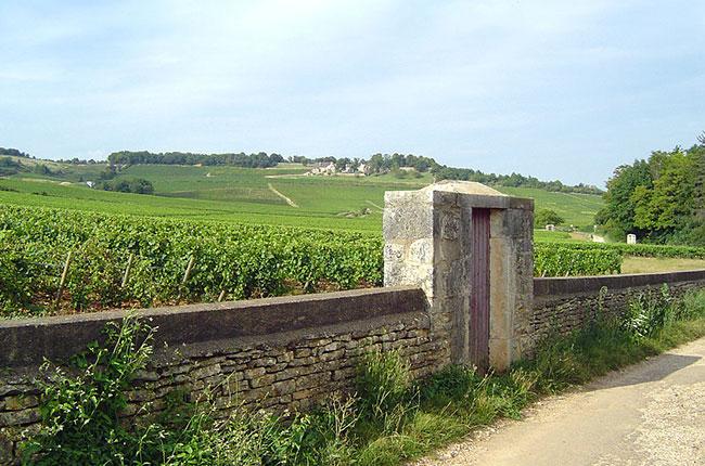 Givry, Côte Chalonnaise