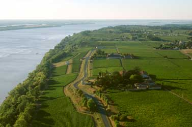 Côtes de Bourg vineyards