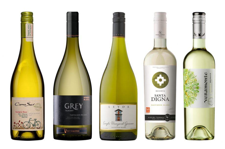 value Chile Sauvignon Blanc