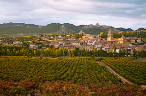 Rioja travel guide