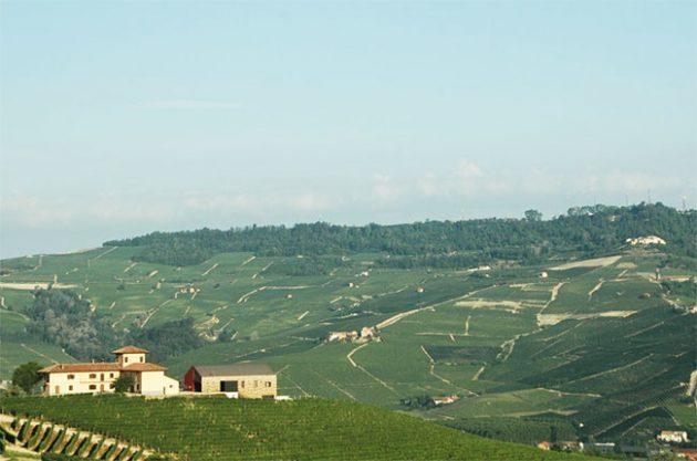 La Brunella farm owned by Baroli in Barolo
