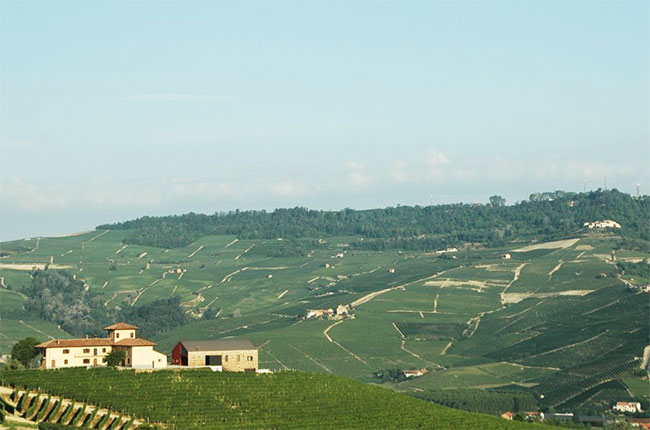 La Brunella farm owned by Baroli in Barolo
