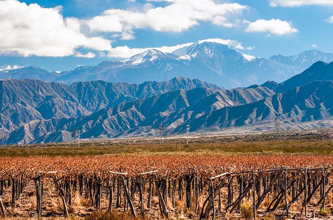 Mendoza travel guide, argentina wine quiz
