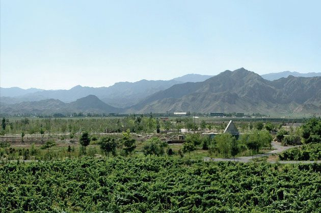 "Ningxia from Decanter Magazines ""a name to watch"""