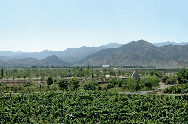 Ningxia from Decanter Magazines