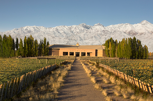 Mendoza wineries, argentina wine quiz