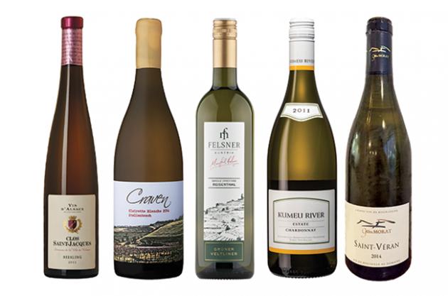 Great wines under £20