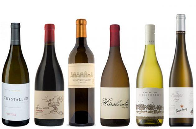Food And Wine Tasting Events