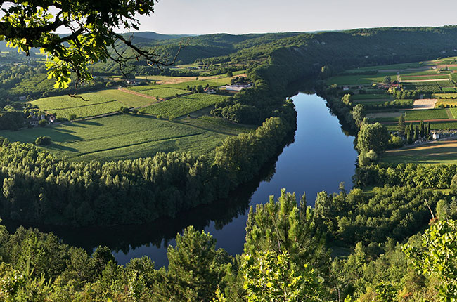 Cahors vineyards, Decanter, Jefford on Monday