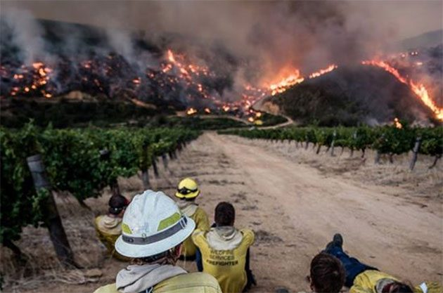 Cape Winelands fire, South Africa