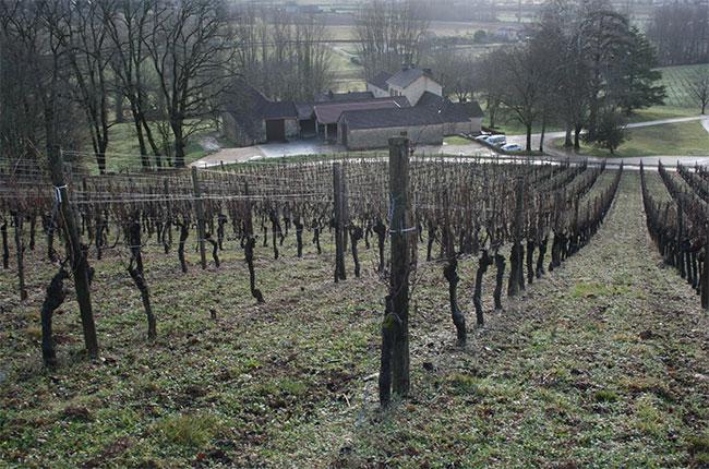 Métairie Grande du Théron, Vignobles Sigaud, Cahors, Jefford