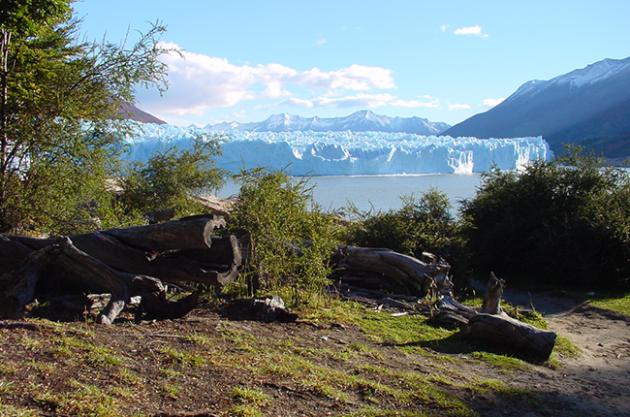 Patagonia, Wines of Argentina