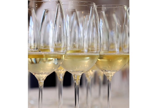 argentinian white wines