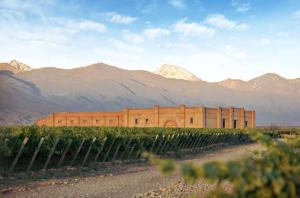 Andeluna, Wines of Argentina