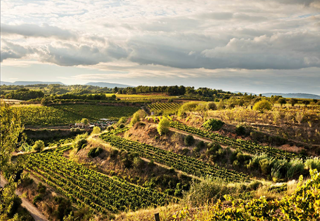 Cava wineries, Gramona