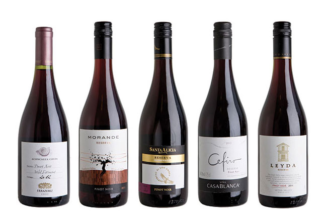 Chilean pinot noir panel tasting results decanter for Best pinot noir in the world