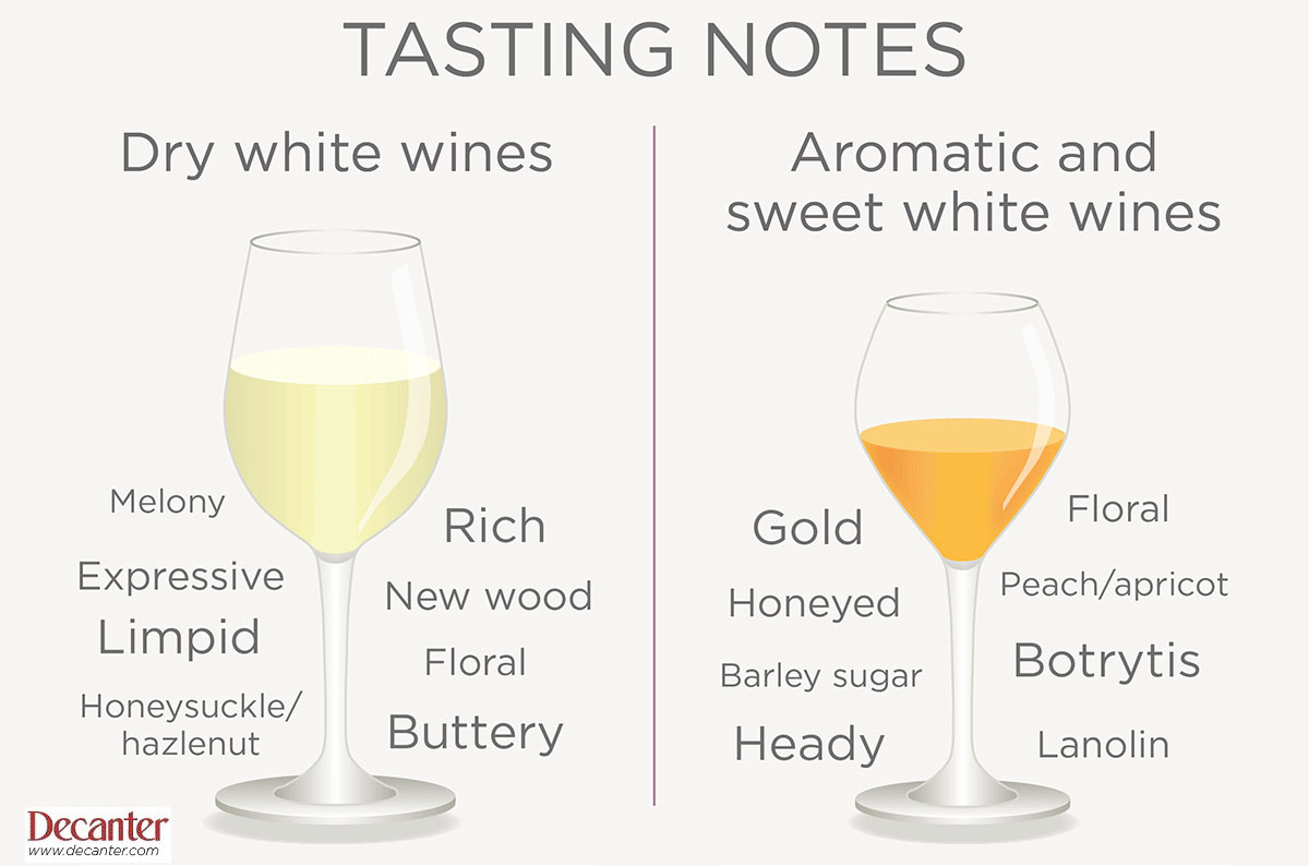 How to read wine tasting notes - Decanter