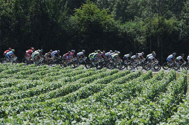 Tour de France riders near to Limoux in Languedoc-Roussillon
