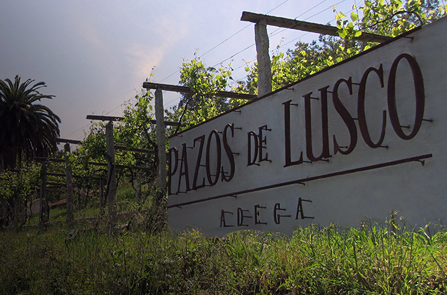 gonzalaz byass buys Rias Baixas winery