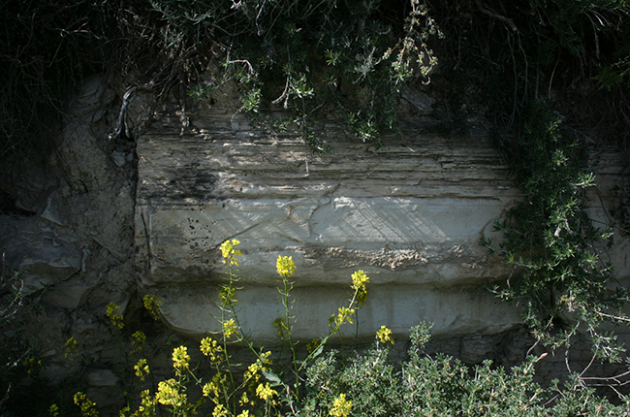 Cretan wine, limestone