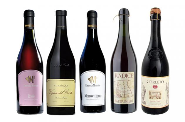 lambrusco wine, decanter wine reviews