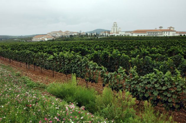 Chateau Junding, Cofco Chinese winery