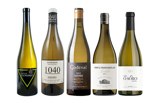 Galician white wines