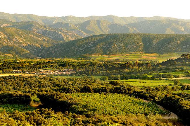 Mas de Daumas Gassac, Gassac Valley, Languedoc