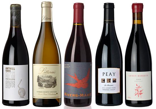 Best Sonoma Coast Wines