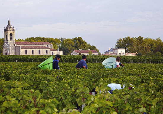 Bordeaux 2015 vintage guide