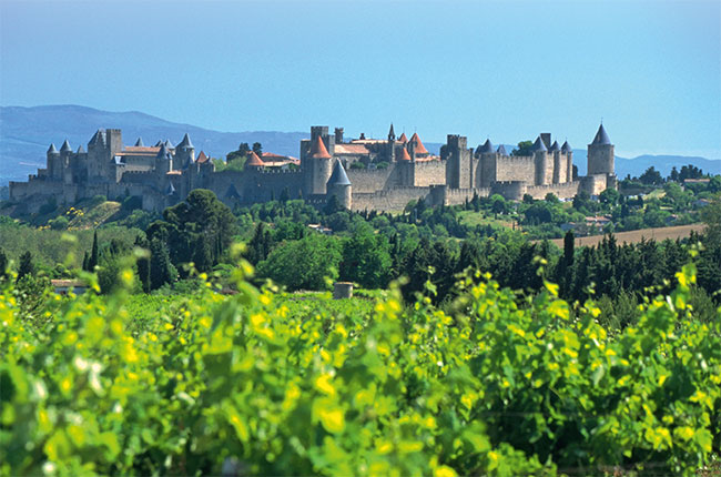 Carcassonne, Languedoc, Decanter
