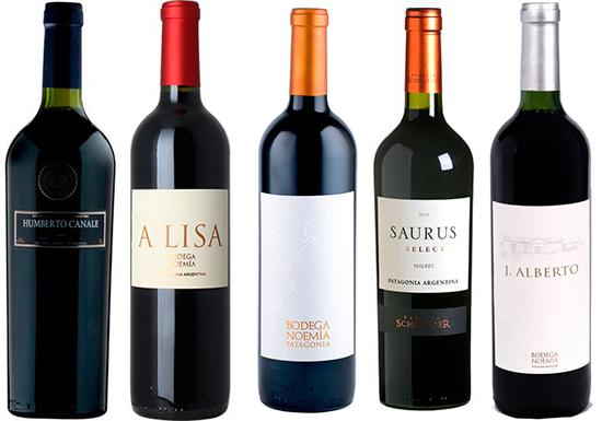 Patagonian Malbec wines