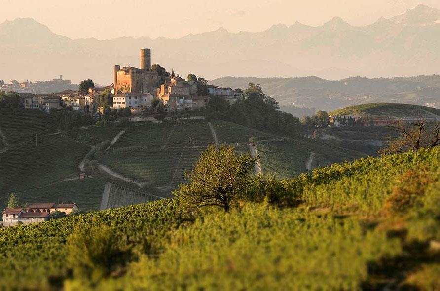 Vietti winery in Castiglioni Falletto