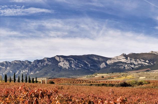 Torre de Oña, a 4.25-hectare Tempranillo vineyard