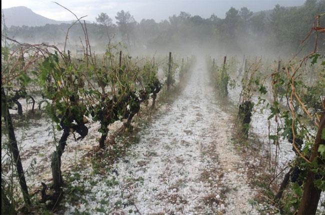 Languedoc hail